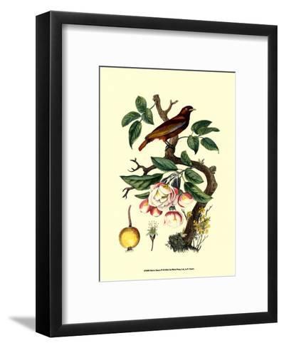 Bird in Nature IV-E^ Guerin-Framed Art Print