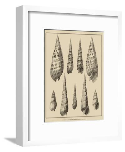 Shells on Khaki IX-Denis Diderot-Framed Art Print