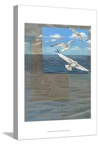 Three White Gulls III-Tara Friel-Stretched Canvas Print