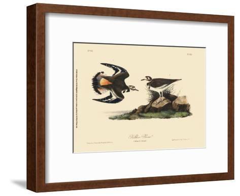 Kildeer Plover-John James Audubon-Framed Art Print