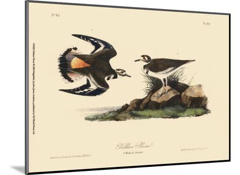 Kildeer Plover-John James Audubon-Mounted Art Print