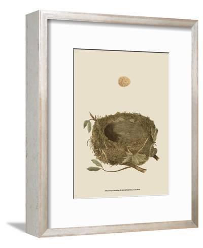 Antique Nest and Egg I-Reverend Francis O^ Morris-Framed Art Print