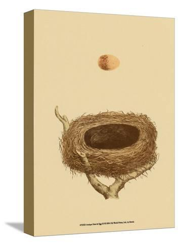 Antique Nest and Egg III-Reverend Francis O^ Morris-Stretched Canvas Print