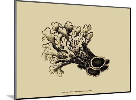 Coral on Khaki II-J^ Wilkes-Mounted Art Print