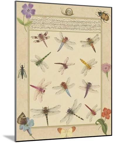 Dragonfly Manuscript II-Jaggu Prasad-Mounted Giclee Print