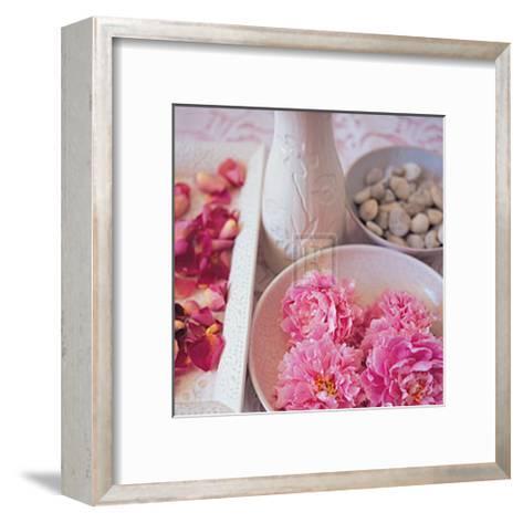 Salmon Rose I-Bill Philip-Framed Art Print