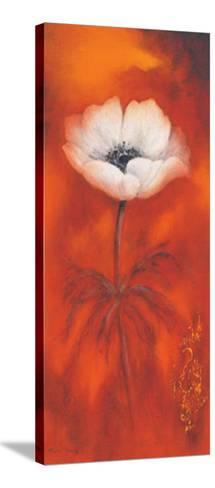 Anemone II-Betty Jansma-Stretched Canvas Print