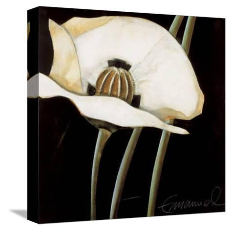 Excellent II-Beate Emanuel-Stretched Canvas Print
