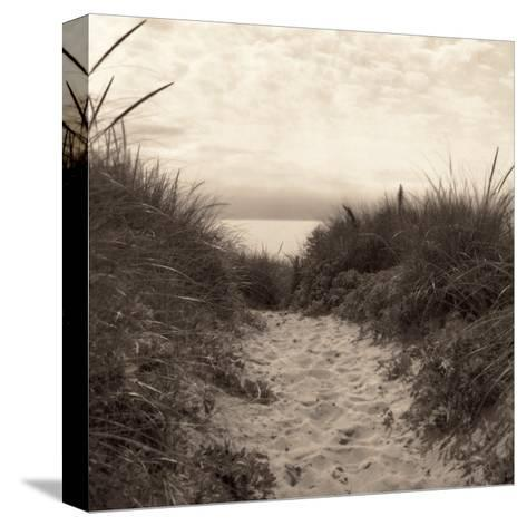 Dune Path-Christine Triebert-Stretched Canvas Print