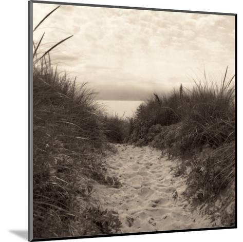Dune Path-Christine Triebert-Mounted Art Print