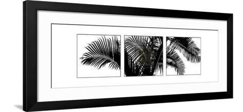 Palm Frond Triptych III-Bill Philip-Framed Art Print