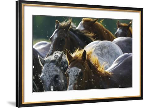 Splash 'n Dash-David R^ Stoecklein-Framed Art Print