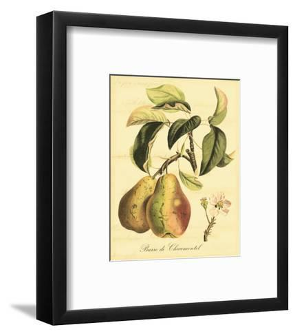 Petite Tuscan Fruits IV--Framed Art Print