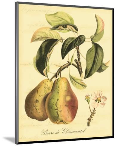 Petite Tuscan Fruits IV--Mounted Art Print