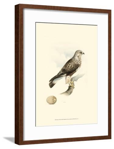 Meyer's Hawk II-Meyer-Framed Art Print