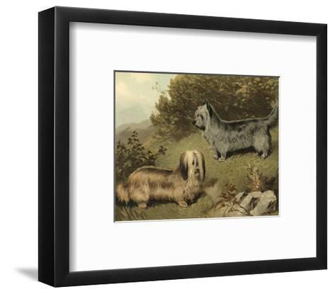 Terriers-Vero Shaw-Framed Art Print