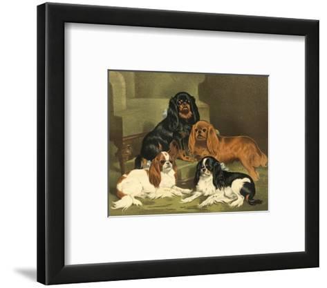 Toy Spaniels-Vero Shaw-Framed Art Print