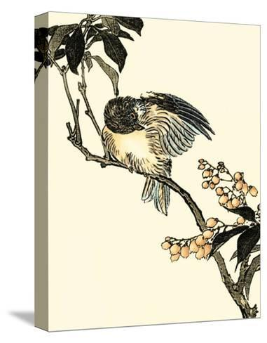 Oriental Bird on Branch V--Stretched Canvas Print