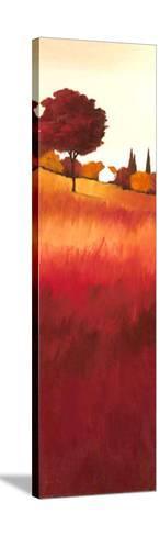 Serene I-Hans Paus-Stretched Canvas Print