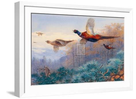 Pheasants in Flight-Archibald Thorburn-Framed Art Print