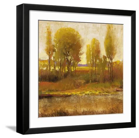 Golden Light I-P^ Patrick-Framed Art Print