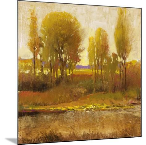 Golden Light I-P^ Patrick-Mounted Art Print