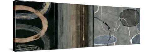 Elation Sensation II-Brent Nelson-Stretched Canvas Print