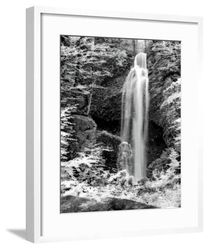 Nature's Jewel II-Charlene Winter Olson-Framed Art Print