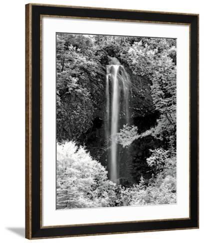 Nature's Jewel I-Mike Jones-Framed Art Print