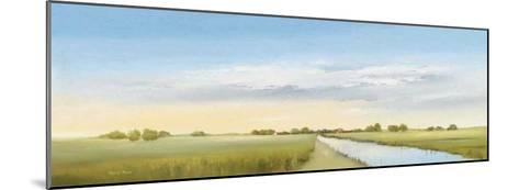 Lowlands I-Hans Paus-Mounted Art Print
