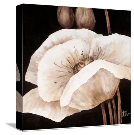 Amazing Poppies I-Jettie Roseboom-Stretched Canvas Print