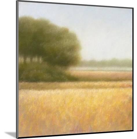 Wheat Field-Hans Dolieslager-Mounted Art Print