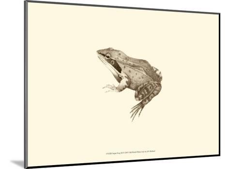 Sepia Frog III-J^ H^ Richard-Mounted Art Print
