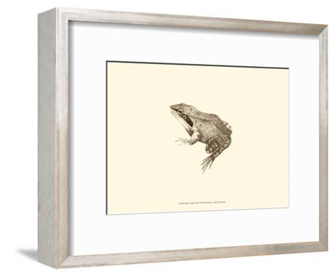 Sepia Frog III-J^ H^ Richard-Framed Art Print