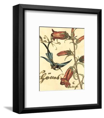 Hummingbird Reverie I--Framed Art Print