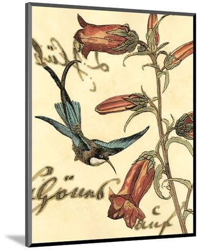 Hummingbird Reverie I--Mounted Art Print