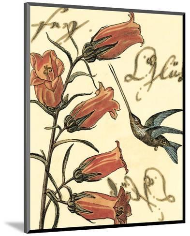 Hummingbird Reverie II--Mounted Art Print