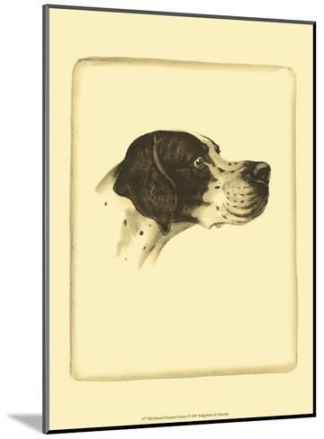 Danchin Pointer-Danchin-Mounted Art Print
