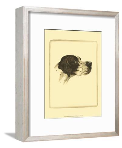 Danchin Pointer-Danchin-Framed Art Print