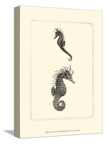 Sepia Seahorse--Stretched Canvas Print