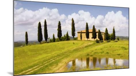 Tuscan Hillside no. 5-Jim Chamberlain-Mounted Art Print