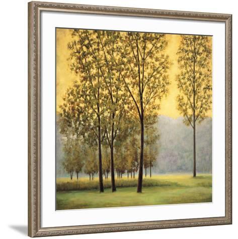Misty Morning II-Neil Thomas-Framed Art Print