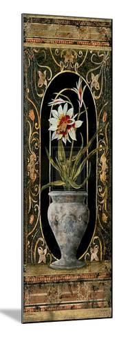 Blanco Botanical I-John Douglas-Mounted Art Print