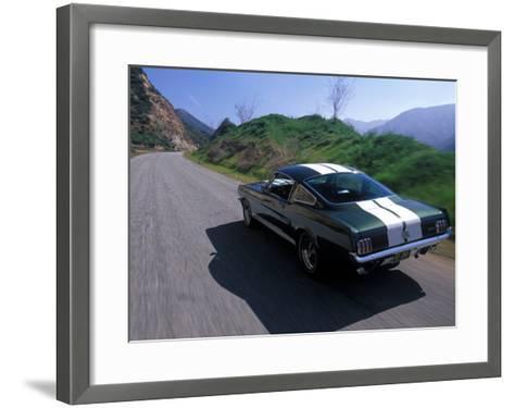 1966 Shelby GT350-David Newhardt-Framed Art Print