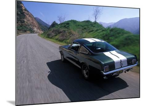 1966 Shelby GT350-David Newhardt-Mounted Giclee Print