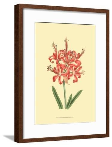 Le Fleur Rouge I-Sydenham Teast Edwards-Framed Art Print