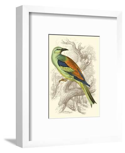 Roller-Sir William Jardine-Framed Art Print