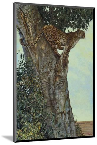 On the Lookout-Kalon Baughan-Mounted Art Print