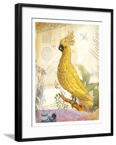 Parrot--Framed Art Print