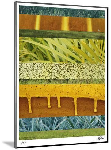Abstraction in Nature I-Mj Lew-Mounted Giclee Print